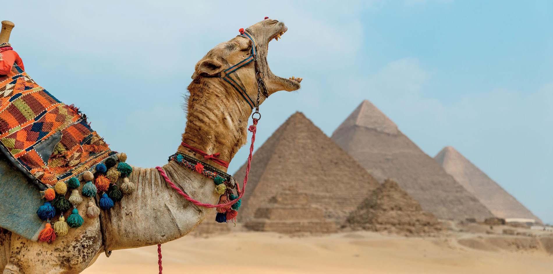 Ausflug nach Kairo und Gizeh von Alexandria Hafen